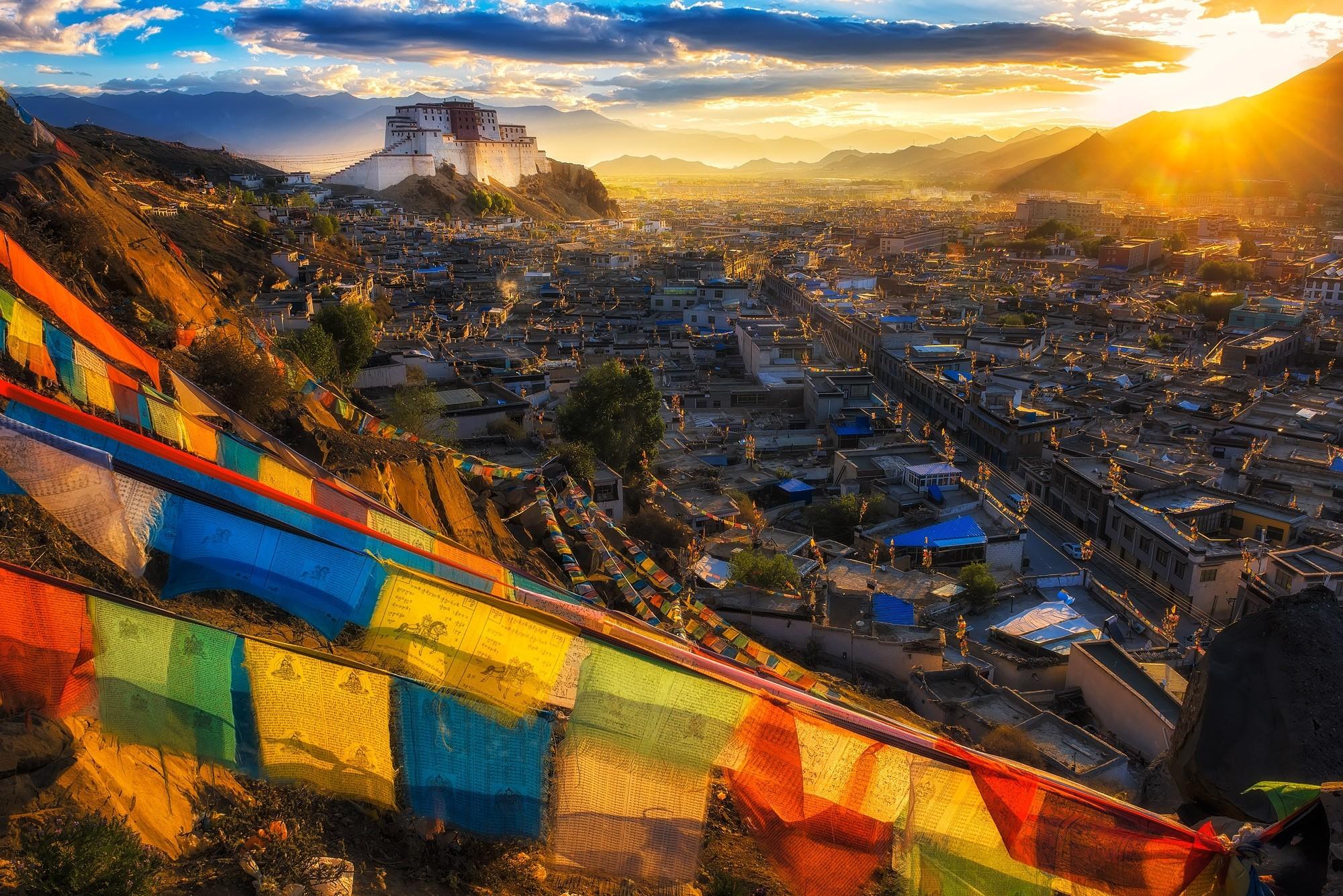 львы картинки рассвет в тибете этого сына