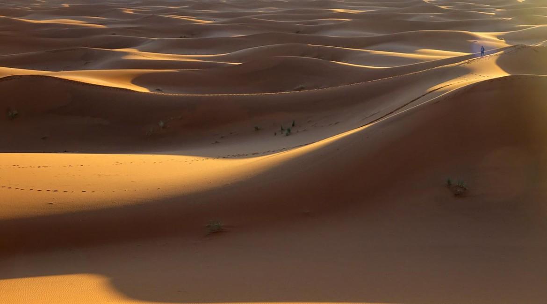Путешествие в Сахару