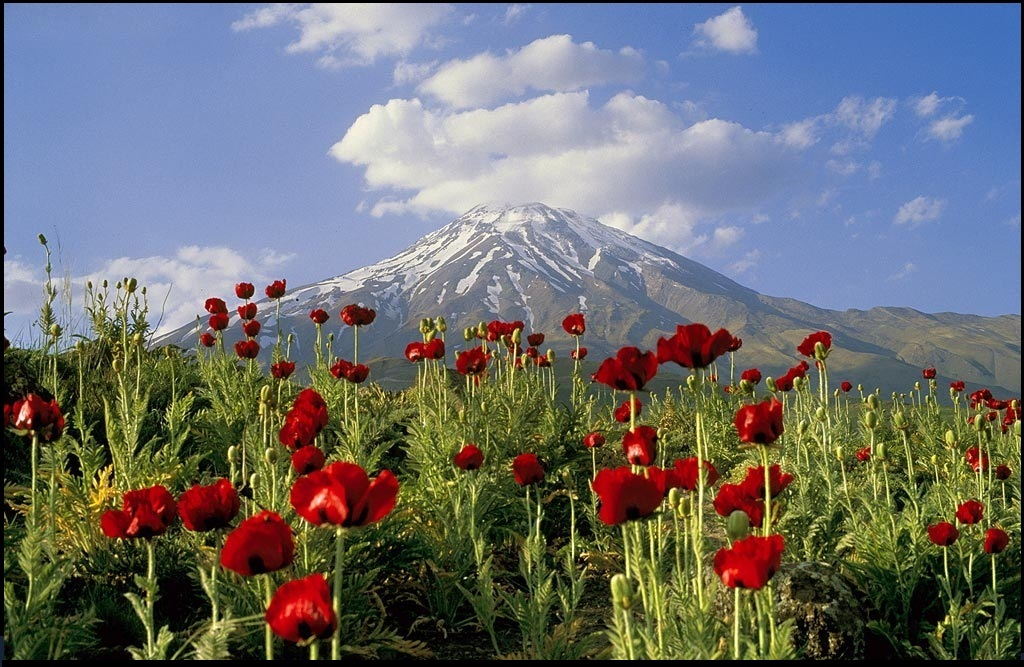 Damavand_Peak_-_Amol_city1