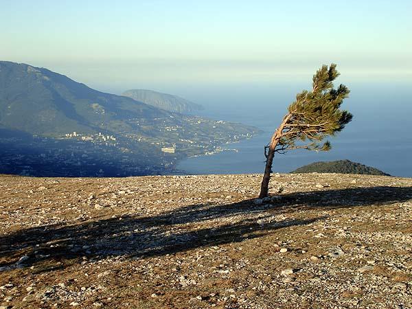 Черноморское побережье, вид с плато Ай-Петри