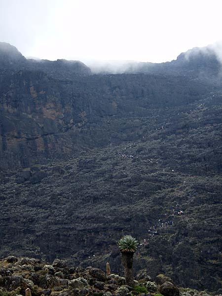 Люди как муравьи - восхождение на Килиманджаро