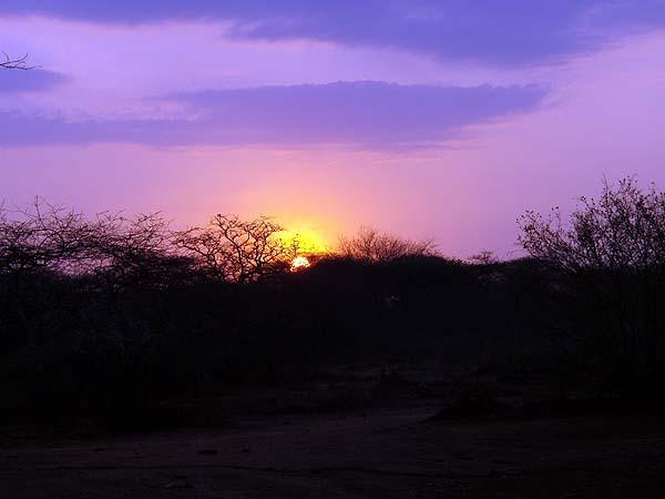 Рассвет в Африке