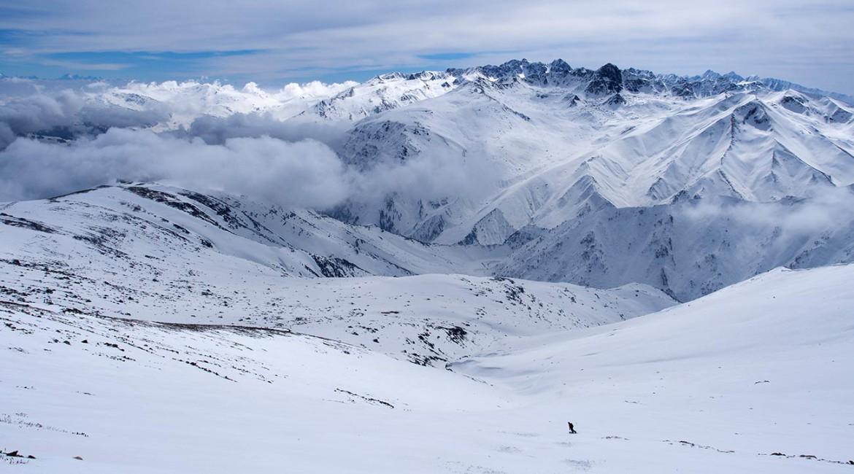 Гульмарг: фрирайд в Гималаях — отчет